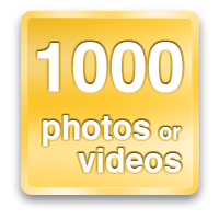 1000 photos or videos